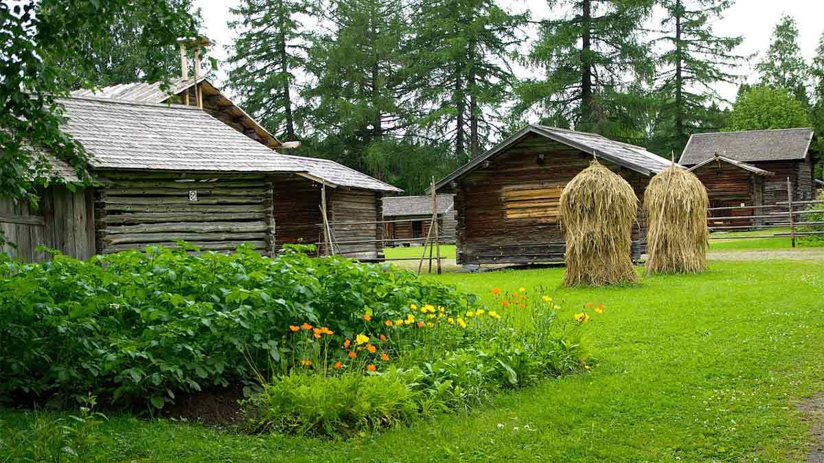 come coltivare orto biologico
